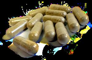 Are shilajit capsules good?
