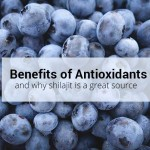 Benefits of Antioxidants and Shilajit