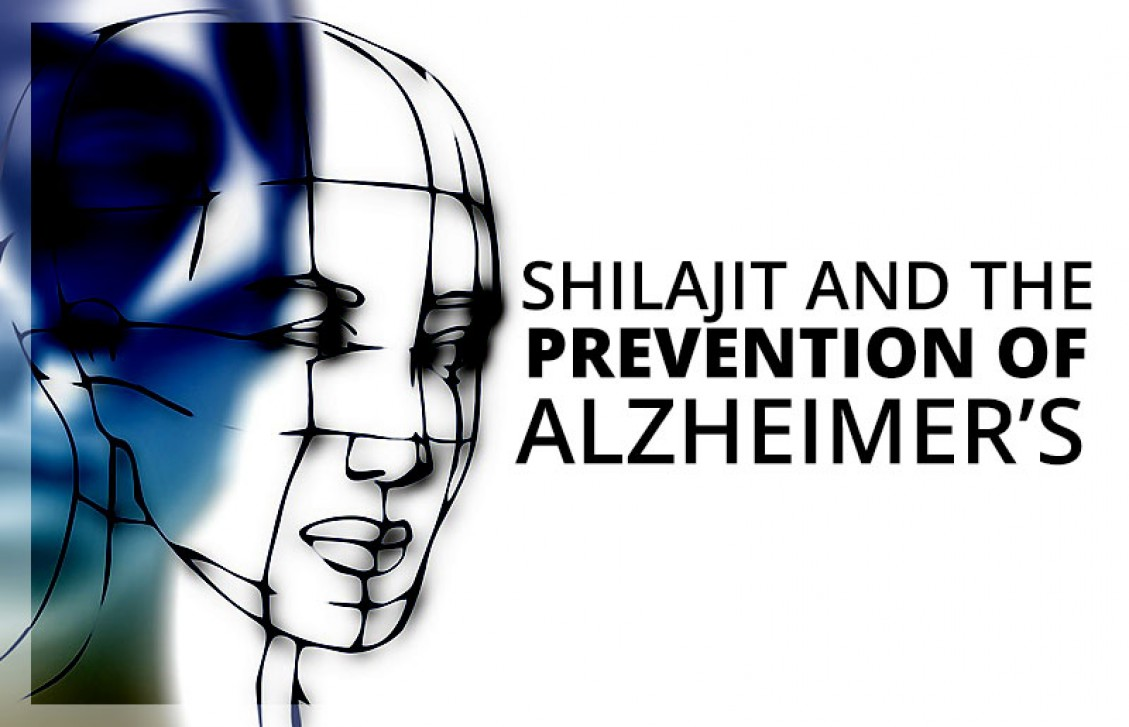 Using shilajit to prevent Alzheimer's