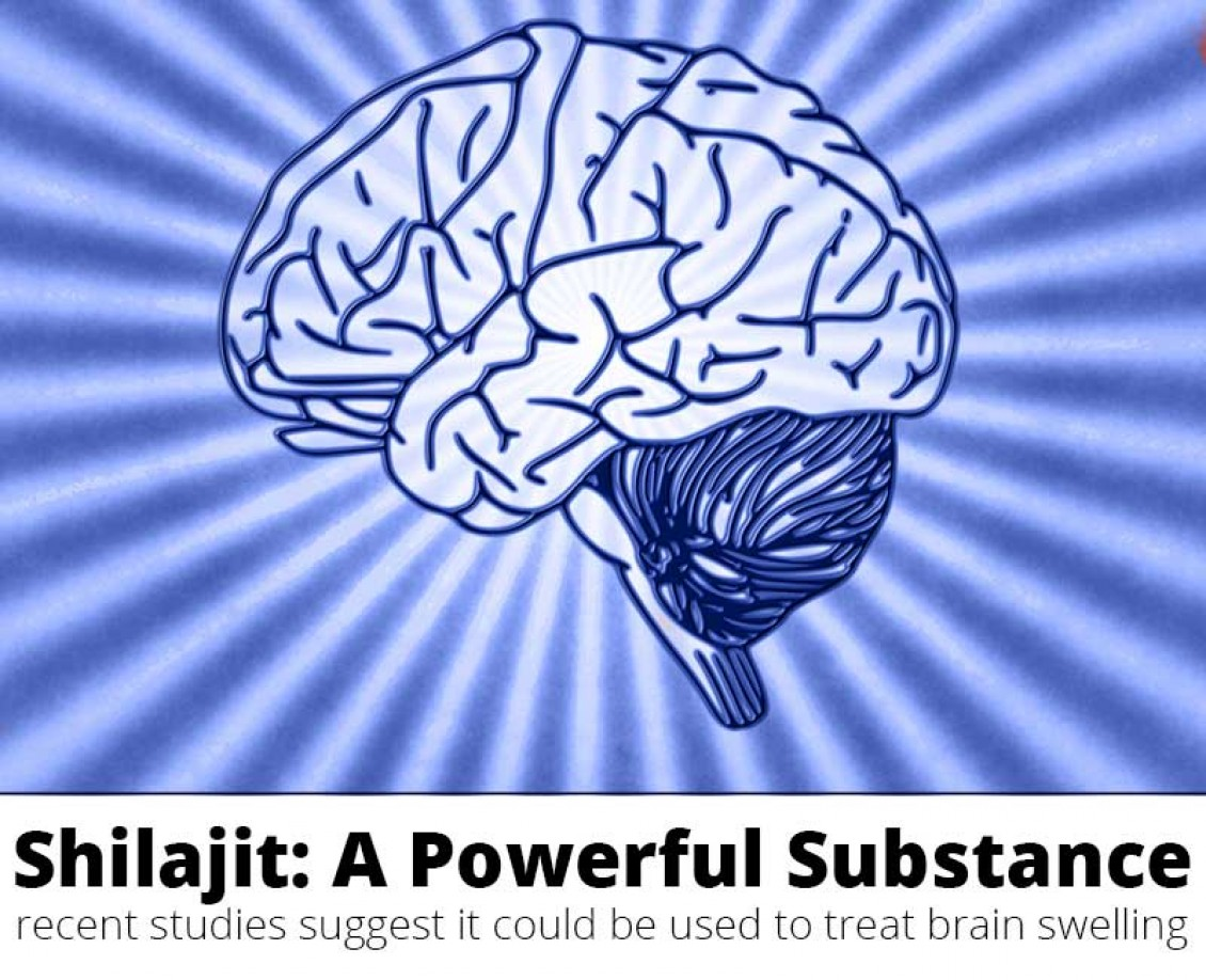 Brain Edema Treatment - Could Shilajit Help?
