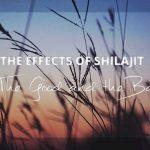 Shilajit Effects