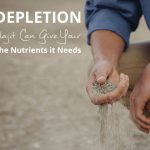 Soil Depletion and How Shilajit Can Give your Body Nutrients